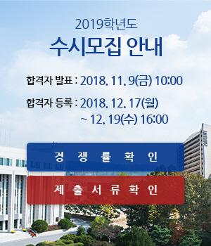 2019학년도 수시모집 안내, 합격자 발표 : 2018. 11. 9(금) 10:00